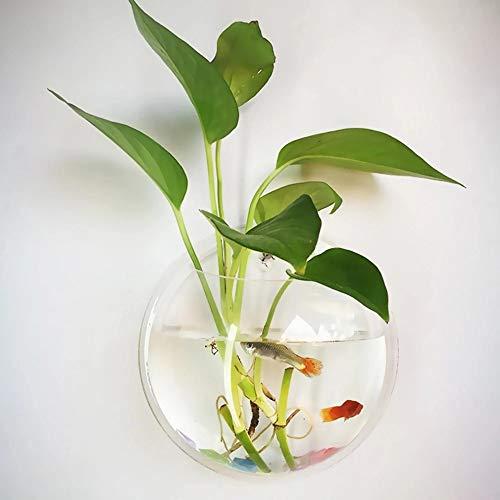 JUNGEN Jarrón Colgante de Vidrio Maceta de Pared Florero de Cristal de Agua Pecera Decoración de Plantas Peces Transparente 35.5cm