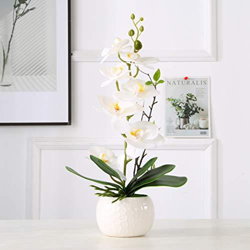 ENCOFT Flores Artificiales Plástico Flor de Phalaenopsis Realista Orquídea Mariposa con Maceta Imitación Cerámica Decoración (Blanco 1, 45cm)