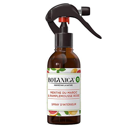 Air Wick Botanica Désodorisant Maison Spray d'Intérieur Pamplemousse/Menthe 236 ml