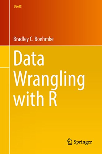 Data Wrangling with R (Use R!) (English Edition)