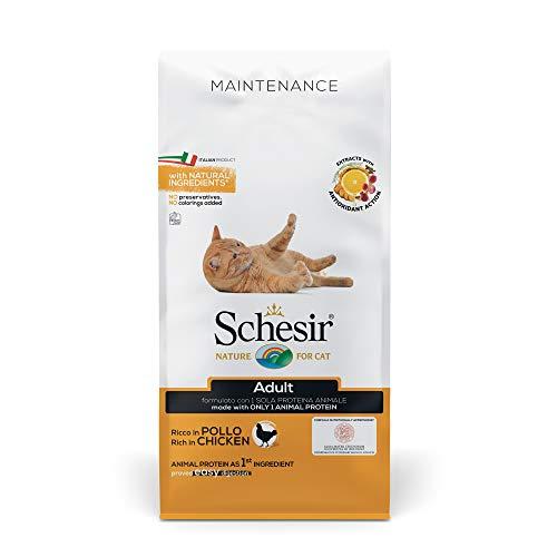 Schesir, Cibo Secco per Gatti Adulti Linea Mantenimento al Gusto Pollo, Crocchette - Formato Sacco da 10 kg