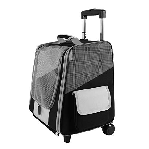Baoblaze Transport Box, Easy Carry on Luggage. for Small Puppies Cat Kittens