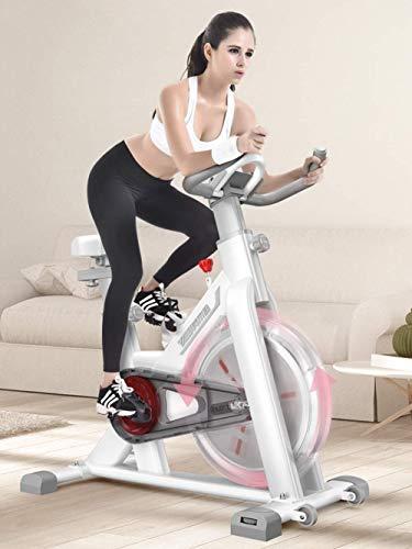 LKK-KK La bicicleta estática reclinada vuelta en bici bicicleta Ciclo Indoor Equipo de entrenamiento estacionaria con W/Pantalla LCD y pie ajustable for el Ministerio del Interior