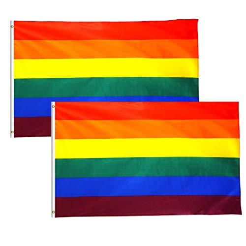 DEZHI 90 x 150 cm (LGBT) Regenbogen Flagge/Regenbogen Fahne/Rainbow Flag/Gay Fahne/Gay Flagge/Gay Flag 2 Stück(LGBT)