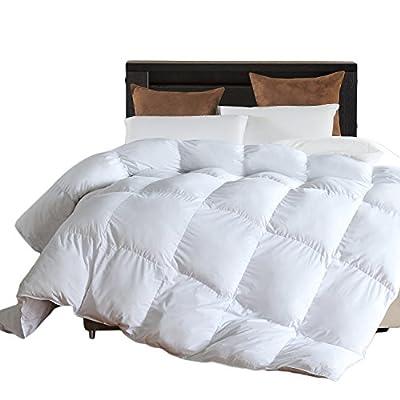 LLOVSOUL Down Alternative Comforter (White,King) - Ultra Soft Brushed Microfiber - Hypoallergenic Plush Mircofiber Comforter Duvet Insert (106x90 inches) by ENJOYBEDDING