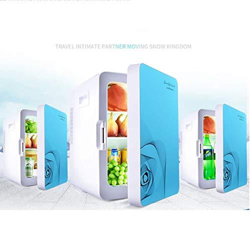 WLAY 20 L elektrische koelbox, draagbaar, 12 V/220 V, dubbel gebruik, mini-koelkast, zeer stil, isotherme, warm/koud, voor auto, kantoor en camping
