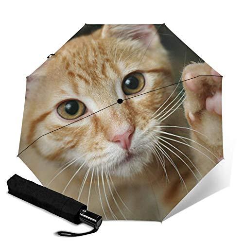 Cat,Sun & Rain Travel Umbrella - Lightweight Compact Umbrella with UV Protection for Men and Women Multiple Colors