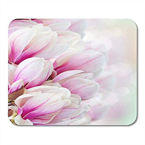 Mausepad Bokeh Blossoming Pink Magnolia...