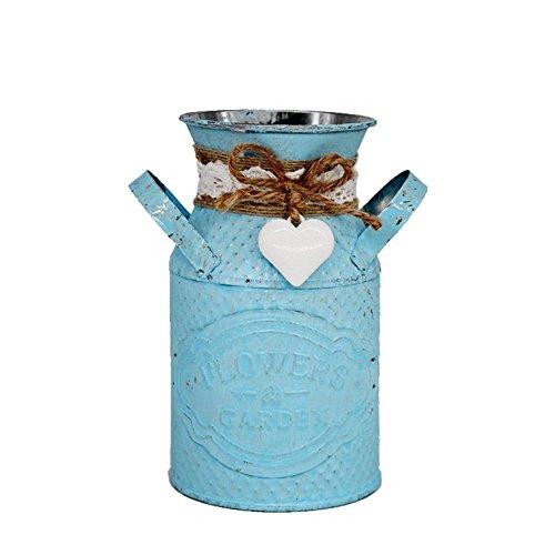 Hangarone - Cubo de hierro para decoración de jardín, diseño de flores, diseño de flores