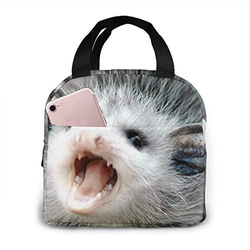 shenguang Bolsa de almuerzo con aislamiento para bebé Possum, caja de almuerzo, caja de asas, bolsa más fría, contenedor de almuerzo para mujeres/hombres/niños/escuela/trabajo/picnic