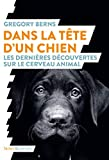Dans la tête d'un chien: Les dernières découvertes sur le cerveau animal