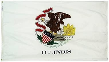 product image for All Star Flags 4x6' Illinois Nylon State Flag - All Weather, Durable, Outdoor Nylon Flag