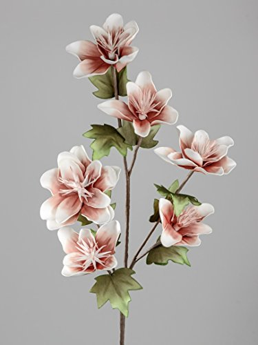 ITRR Blütenzweig mit 6 großen Blüten;ca. 114cm