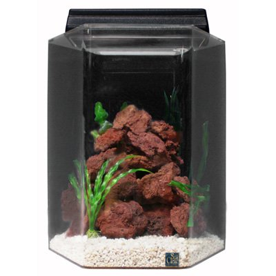SeaClear 50 Gallon Acrylic Combo Set
