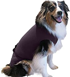 Surgi~Snuggly Washable Dog Diapers Cover - Small Dogs to Large Dogs - Helps with Your Dogs Incontinence - 2XL-Small Plum