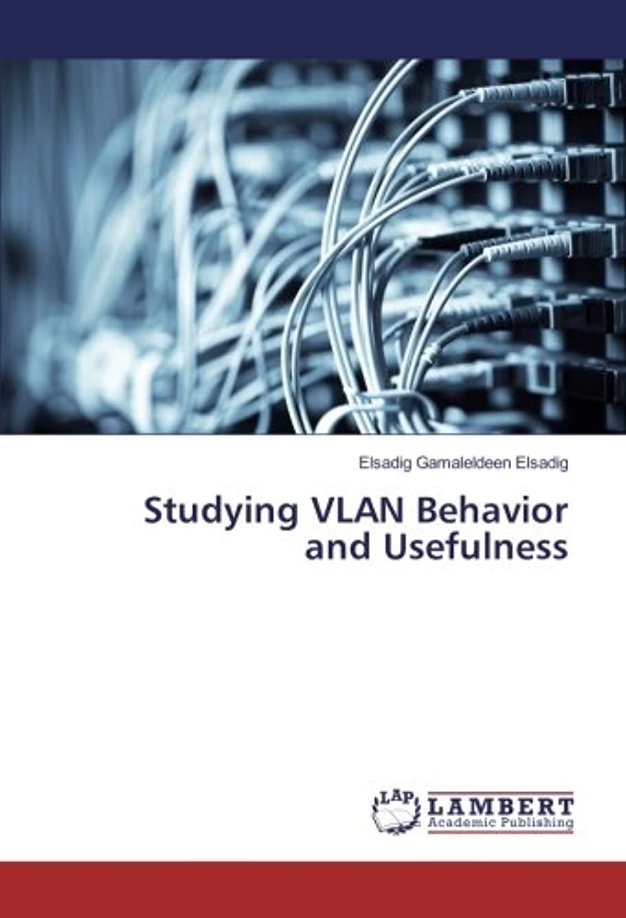 袋蜂症候群Studying VLAN Behavior and Usefulness