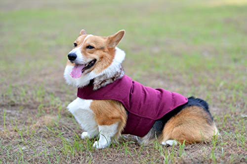 Comfortland Cozy Dog Cotton Padded Jacket Dog Winter Coat for Cat Cold Weather Sweater Fleece Warm Dog Vest for Pet Dog Clothes for Christmas with Fur Collar for Small Medium Large Dogs,Purple