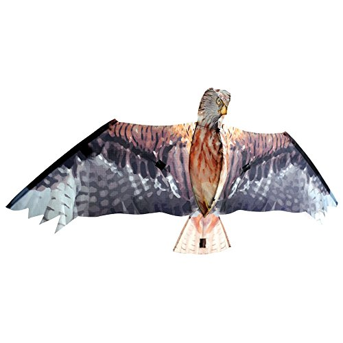Brookite 3375 – Cerf-Volant Red Kite, 47 x 105 cm