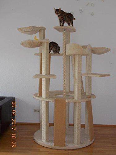 Stabiler Kratzbaum Höhe 210 cm mit Bodenplatte 120 cm Durchm. , Gewicht 125 KG - 5 Jahre Garantie für die Stabilität