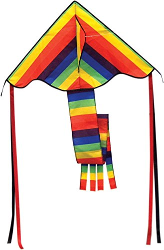 Super Rainbow Flyer Kite