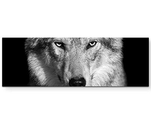 Paul Sinus Art Leinwandbilder | Bilder Leinwand 120x40cm Portrait – Wolf schwarz, weiß