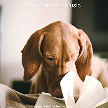 New Age Music for Resting Puppies