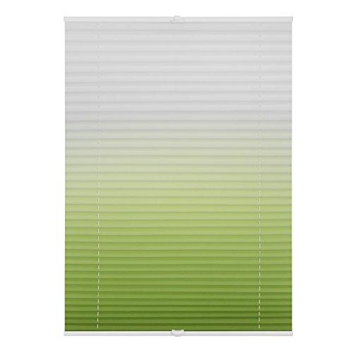 Lichtblick PKV.090.130.106 Plissee Klemmfix, ohne Bohren, verspannt, Farbverlauf Grün Weiß, 90 cm x 130 cm (B x L)