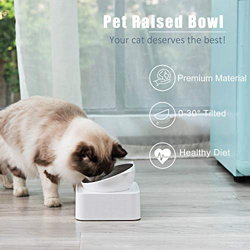 Raised Cat Food Water Bowl with Detachable Elevated Stand Pet Feeder