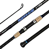 Fiblink 2-Piece Surf Casting Fishing Rod Carbon Fiber Travel Fishing Surf Rod (2-Piece, 9-Feet...