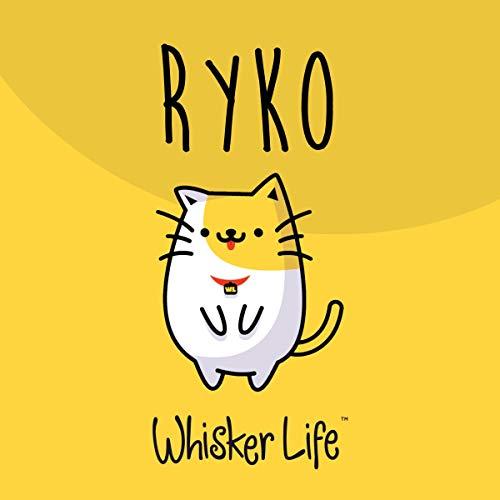 Ryko audiobook cover art