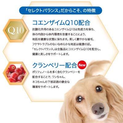 セレクトバランスパピーチキン小粒子犬・母犬用7kg