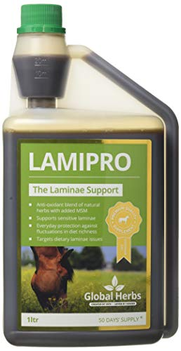 GLOBAL HERBS LAMIPRO SUPPLEMENT - 500 ML - GLB0430