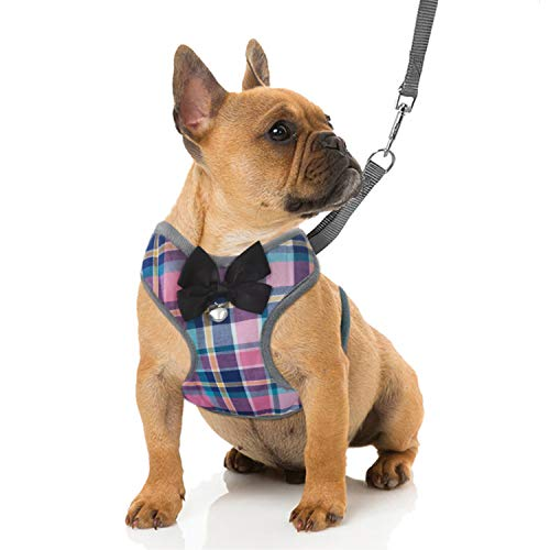 RYPET Small Dog Harness and Leash Set - Dog Harness No Pull Pet Harness with Soft Mesh Nylon Vest for Small Dogs and Cats Colorful S
