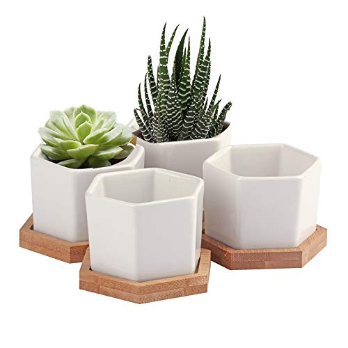 Succulent Pots, OAMCEG 2.75 inch Mini Succulent Plant Pots, Set of 4 White Ceramic Succulent Cactus Planter Pots with Bamboo Tray (Plants NOT Included)