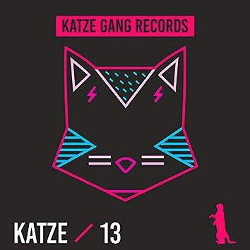 Katze 13
