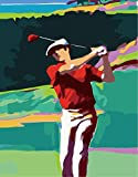 Mrlwy DIY Pintura Al Óleo Golf Paint by Numbers para Lienzo Niños Adultos Decoración Set De Regalo Pintura Acrílica Sin Marco 16X20 Pulgadas (Sin Marco)