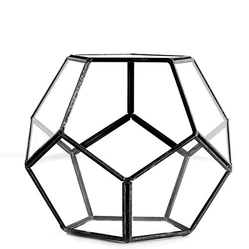 Zidao Mini Glass Terrarium Geometric Decorative Terrarium Decoration Geometric Wall Decor Container Eternal Flower Gift Box Wedding Decoration Succulent Plants Plant Pot,Schwarz