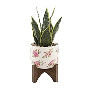 Flora Bunda Artificial Succulent Faux Plant 15.5″ H Snake Plant in 5″ Caveman Ceramic Planter on Stand,Snake Plant 5″ White