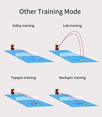 SKYEGLE Professionelle Tennisballmaschine, tragbarer Tennisballwerfer, automatische Übungsausrüstung, Ballwerfer, Shooter mit Fernbedienung & Lithium-Batterie betrieben für Tennistraining – S4015
