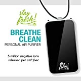 Personal Air Purifier Wearable/Ionizer Necklace/Releases Negative Ions to Breathe Clean Air/Portable Travel Air Cleaner/Wear Around Neck/Keep Germs and viruses Away/Mini Air Filter