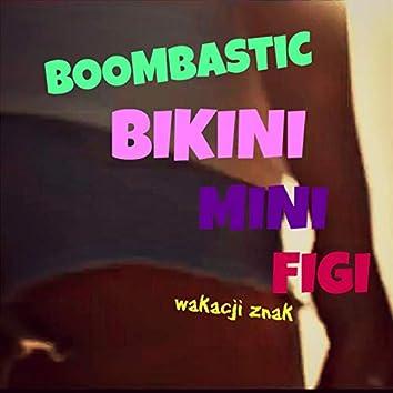 Bikini mini figi  (Radio Edit )