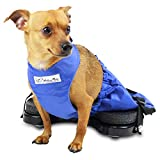 Walkin' Scooter for Rear Legs | Indoor Dog Wheelchair Alternative for Paralyzed Pets | Protects Chest and Limbs | Durable Nylon | Breathable and Comfortable