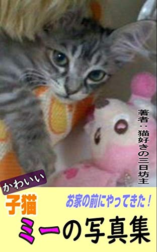 [画像:お家の前にやってきた! かわいい子猫 ミーの写真集: 癒しの猫写真集 猫の写真集]