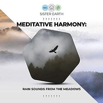 ! ! ! ! ! ! ! Meditative Harmony: Rain Sounds from the Meadows ! ! ! ! ! ! !