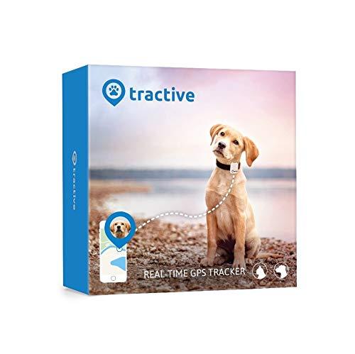 Tractive collier GPS pour chien - Traceur GPS avec portée...