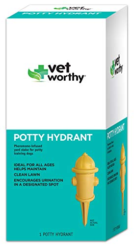 Vet Worthy Pet Potty Hydrant for Dogs