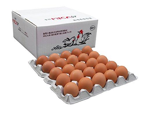 吉野MICA卵 50個 (45個+割れ補償5個) 奈良県産 こだわり 高級卵 大阪府鶏卵品評会最優秀賞受賞 ラッピング 対応可