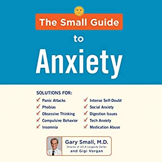 The Small Guide to Anxiety audiobook cover art