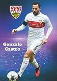 Gonzalo Castro: VfB Stuttgart I Fußball-Notizbuch