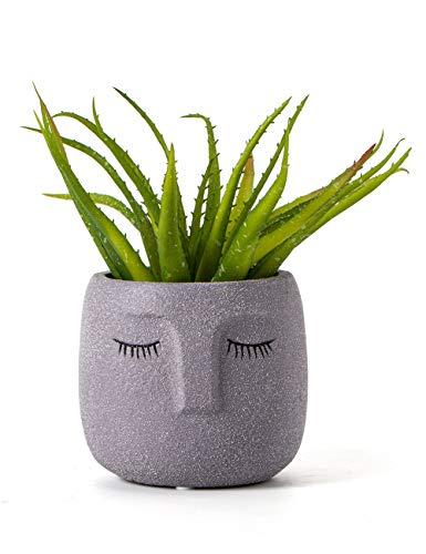Head Design Plant Pot with Drainage Hole, Elegant Cement Face Planter for Flower (Grey)